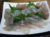 ウミタナゴの生食 (8).jpg