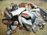 シロザケの頭 塩鮭 (2).jpg